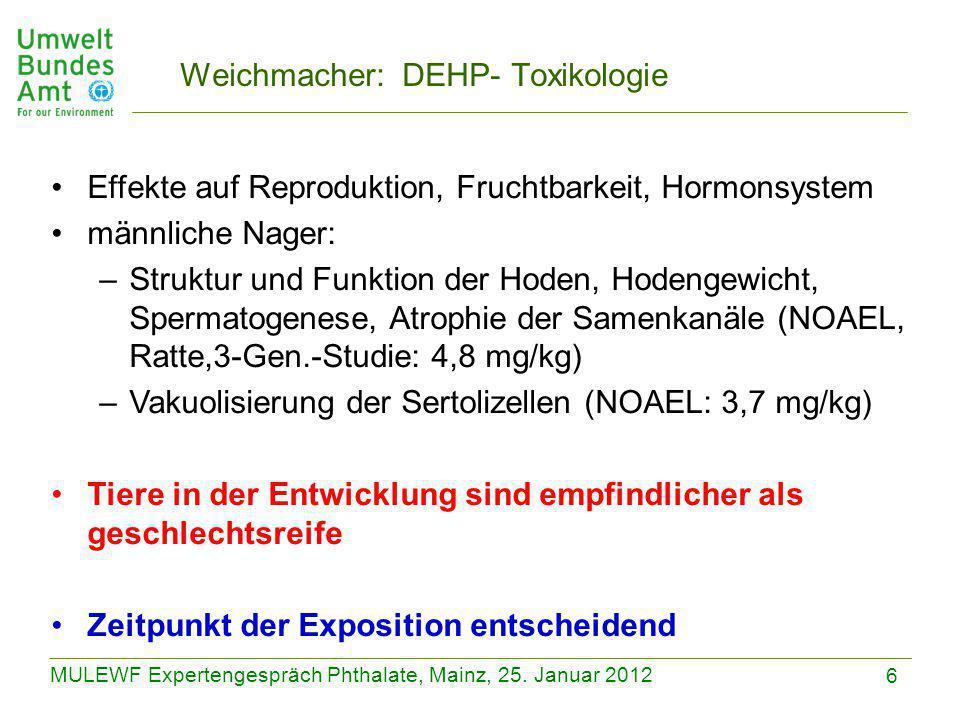 6 MULEWF Expertengespräch Phthalate, Mainz, 25. Januar 2012 Weichmacher: DEHP- Toxikologie Effekte auf Reproduktion, Fruchtbarkeit, Hormonsystem männl
