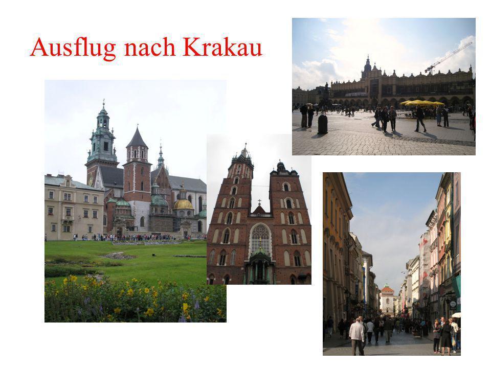 Ausflug nach Krakau