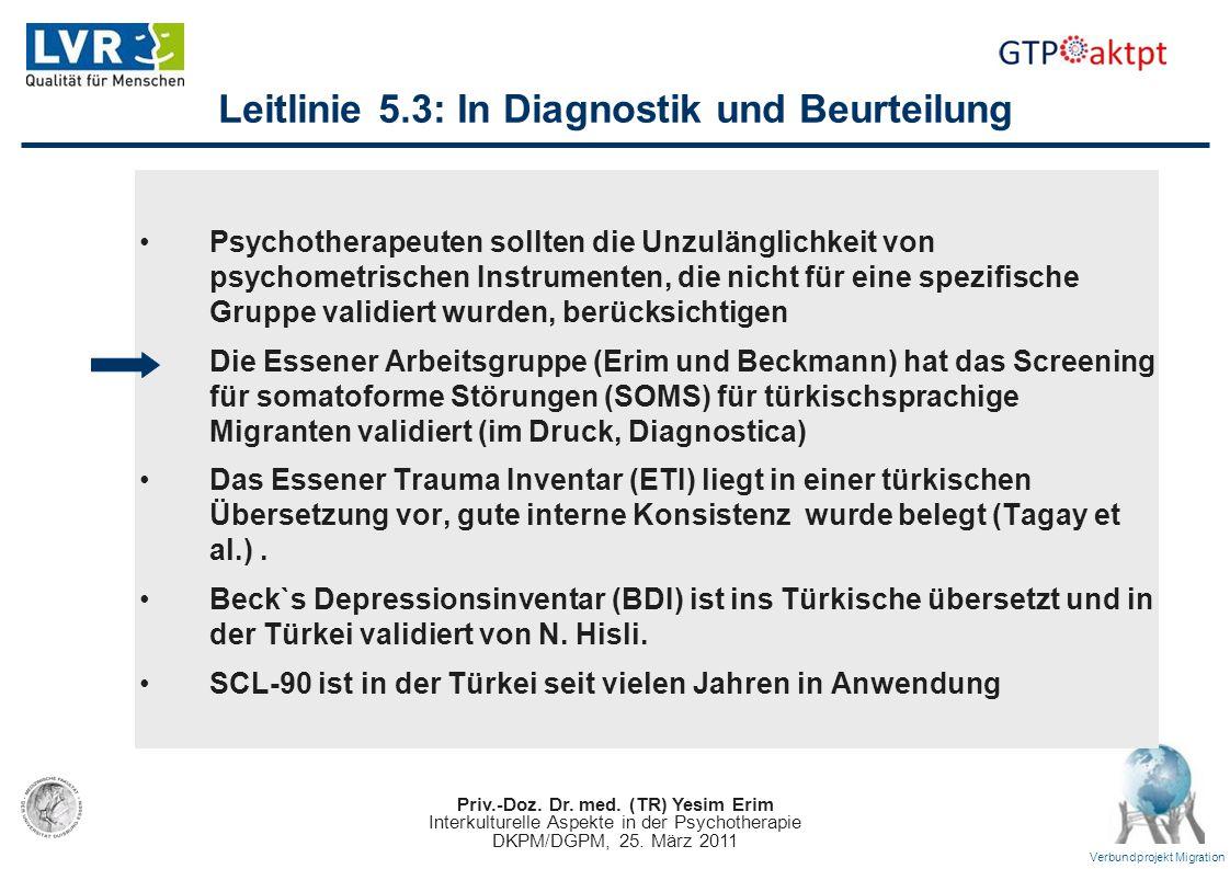 Priv.-Doz. Dr. med. (TR) Yesim Erim Interkulturelle Aspekte in der Psychotherapie DKPM/DGPM, 25. März 2011 Verbundprojekt Migration Leitlinie 5.3: In