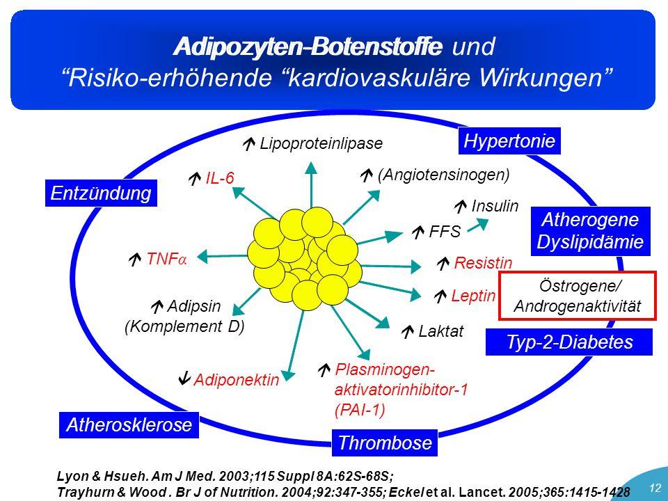 Adipozyten-Botenstoffe und Risiko-erhöhende kardiovaskuläre Wirkungen 12 Adipozyten-Botenstoffe Fett- gewebe  IL-6  Adiponektin  Leptin  TNF α  Adipsin (Komplement D)  Plasminogen- aktivatorinhibitor-1 (PAI-1)  Resistin  FFS  Insulin  (Angiotensinogen)  Lipoproteinlipase  Laktat Entzündung Typ-2-Diabetes Hypertonie Atherogene Dyslipidämie Thrombose Atherosklerose Lyon & Hsueh.