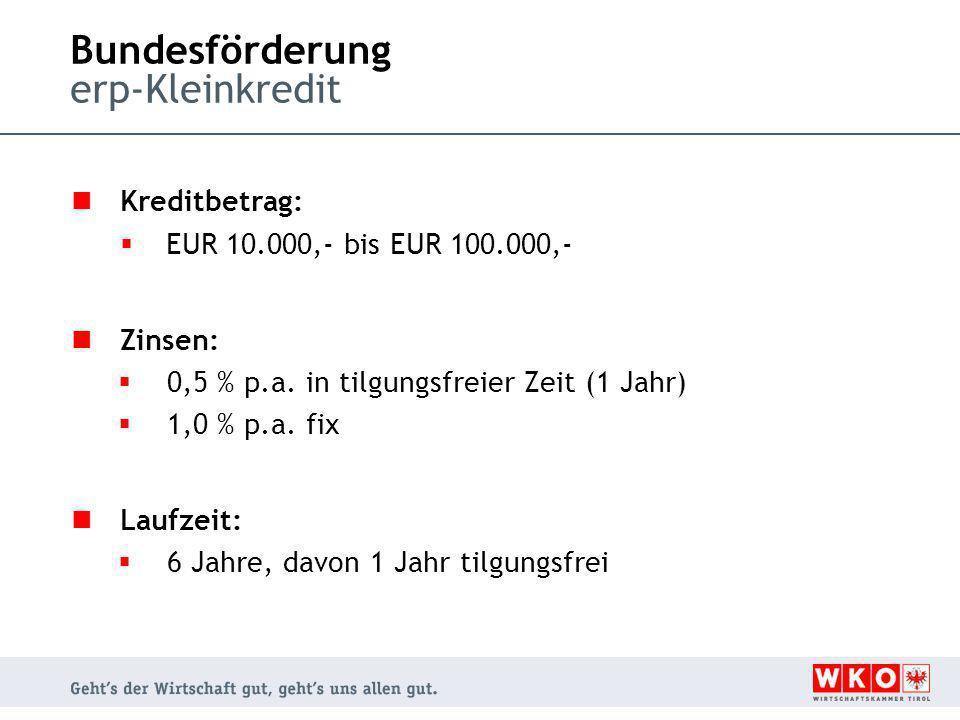 Bundesförderung erp-Kleinkredit Kreditbetrag:  EUR 10.000,- bis EUR 100.000,- Zinsen:  0,5 % p.a. in tilgungsfreier Zeit (1 Jahr)  1,0 % p.a. fix L