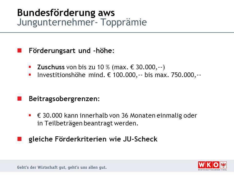 Bundesförderung aws Jungunternehmer- Topprämie Förderungsart und -höhe:  Zuschuss von bis zu 10 % (max. € 30.000,--)  Investitionshöhe mind. € 100.0