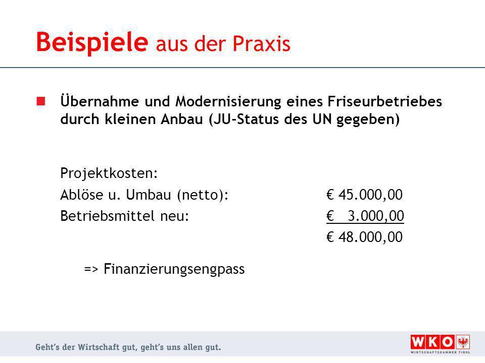 Übernahme und Modernisierung eines Friseurbetriebes durch kleinen Anbau (JU-Status des UN gegeben) Projektkosten: Ablöse u.