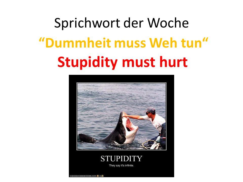 Sprichwort der Woche Dummheit muss Weh tun Stupidity must hurt