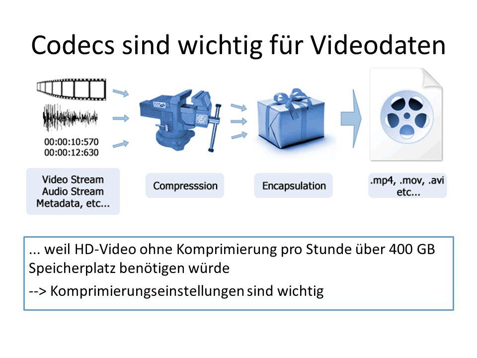 Codecs sind wichtig für Videodaten... weil HD-Video ohne Komprimierung pro Stunde über 400 GB Speicherplatz benötigen würde --> Komprimierungseinstell