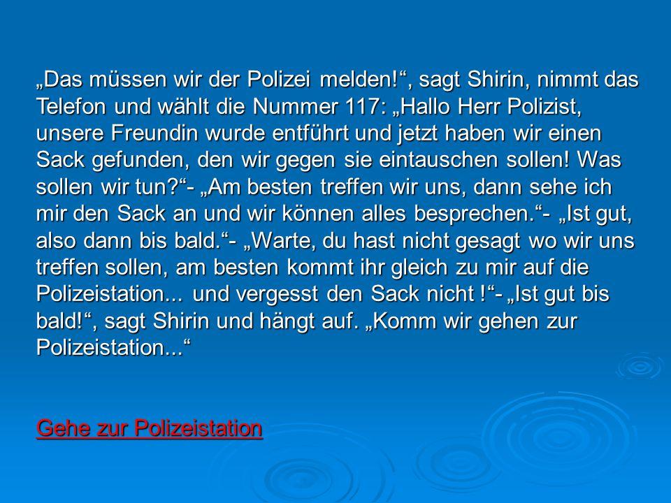 """""""Das müssen wir der Polizei melden!"""", sagt Shirin, nimmt das Telefon und wählt die Nummer 117: """"Hallo Herr Polizist, unsere Freundin wurde entführt un"""