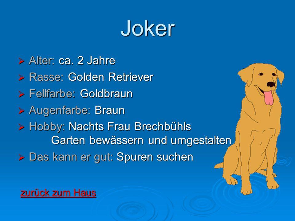 Joker  Alter: ca. 2 Jahre  Rasse: Golden Retriever  Fellfarbe: Goldbraun  Augenfarbe: Braun  Hobby: Nachts Frau Brechbühls Garten bewässern und u