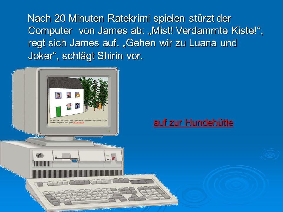 """Nach 20 Minuten Ratekrimi spielen stürzt der Computer von James ab: """"Mist! Verdammte Kiste!"""", regt sich James auf. """"Gehen wir zu Luana und Joker"""", sch"""