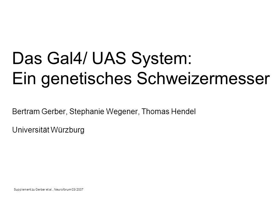 Das Gal4/ UAS System: Ein genetisches Schweizermesser Bertram Gerber, Stephanie Wegener, Thomas Hendel Universität Würzburg Supplement zu Gerber et al., Neuroforum 03/ 2007