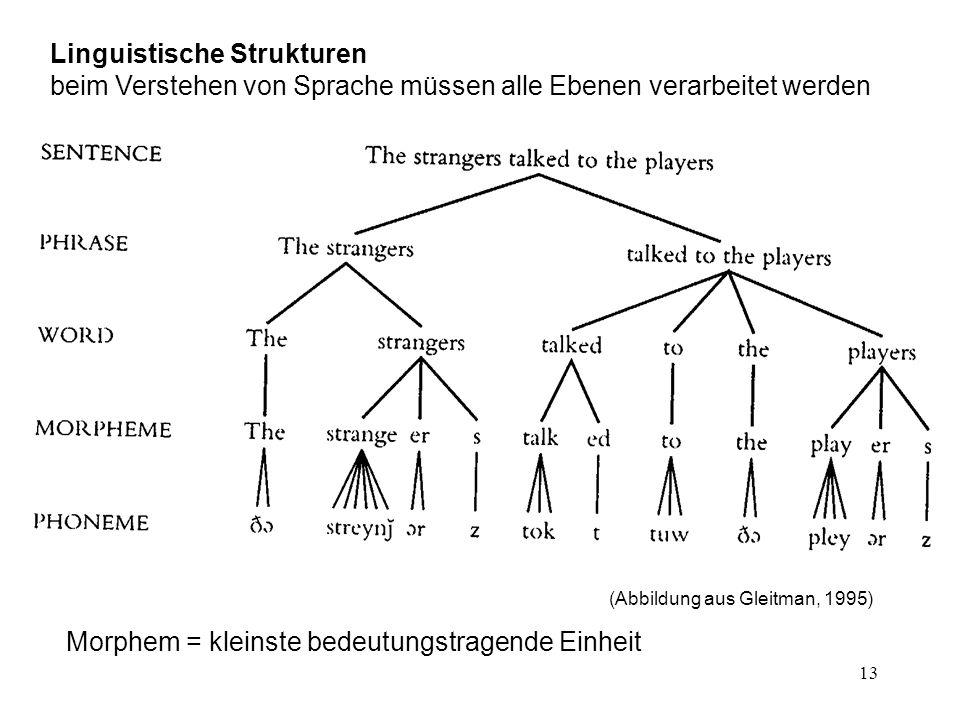 13 Linguistische Strukturen beim Verstehen von Sprache müssen alle Ebenen verarbeitet werden (Abbildung aus Gleitman, 1995) Morphem = kleinste bedeutungstragende Einheit