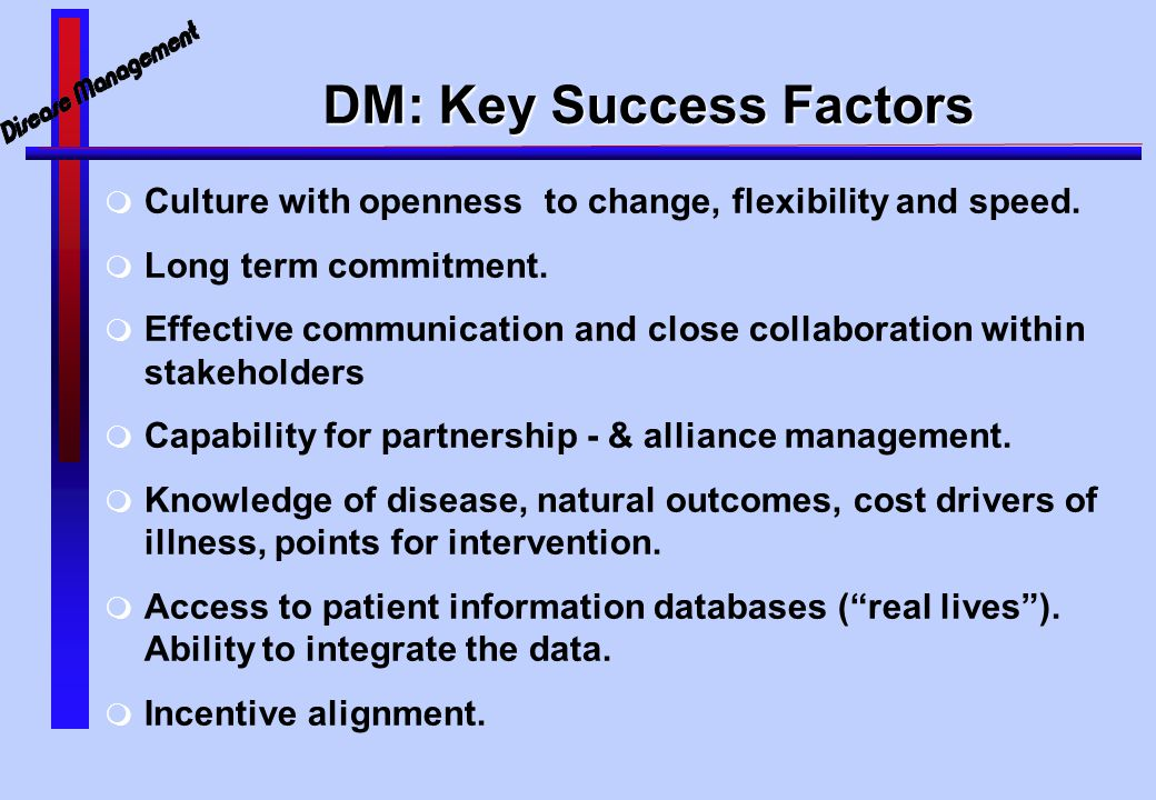 DM: Key Success Factors  Culture with openness to change, flexibility and speed.