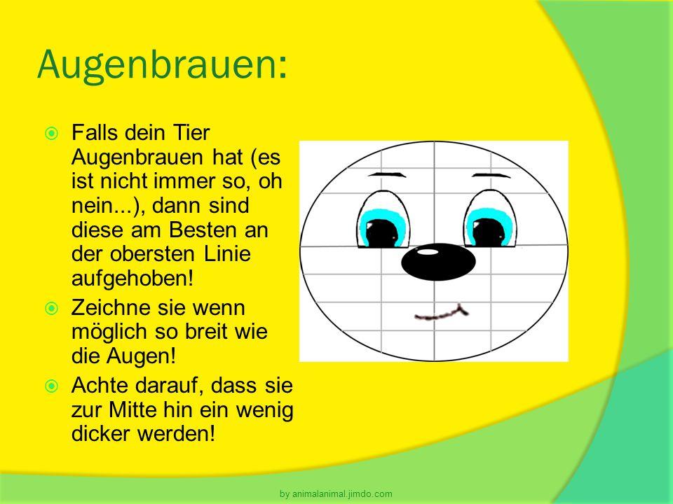 Augenbrauen:  Falls dein Tier Augenbrauen hat (es ist nicht immer so, oh nein...), dann sind diese am Besten an der obersten Linie aufgehoben!  Zeic