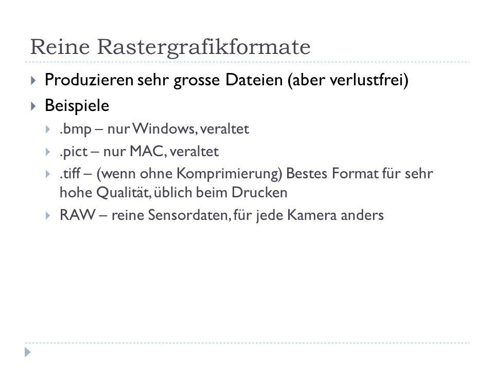 Reine Rastergrafikformate  Produzieren sehr grosse Dateien (aber verlustfrei)  Beispiele .bmp – nur Windows, veraltet .pict – nur MAC, veraltet .