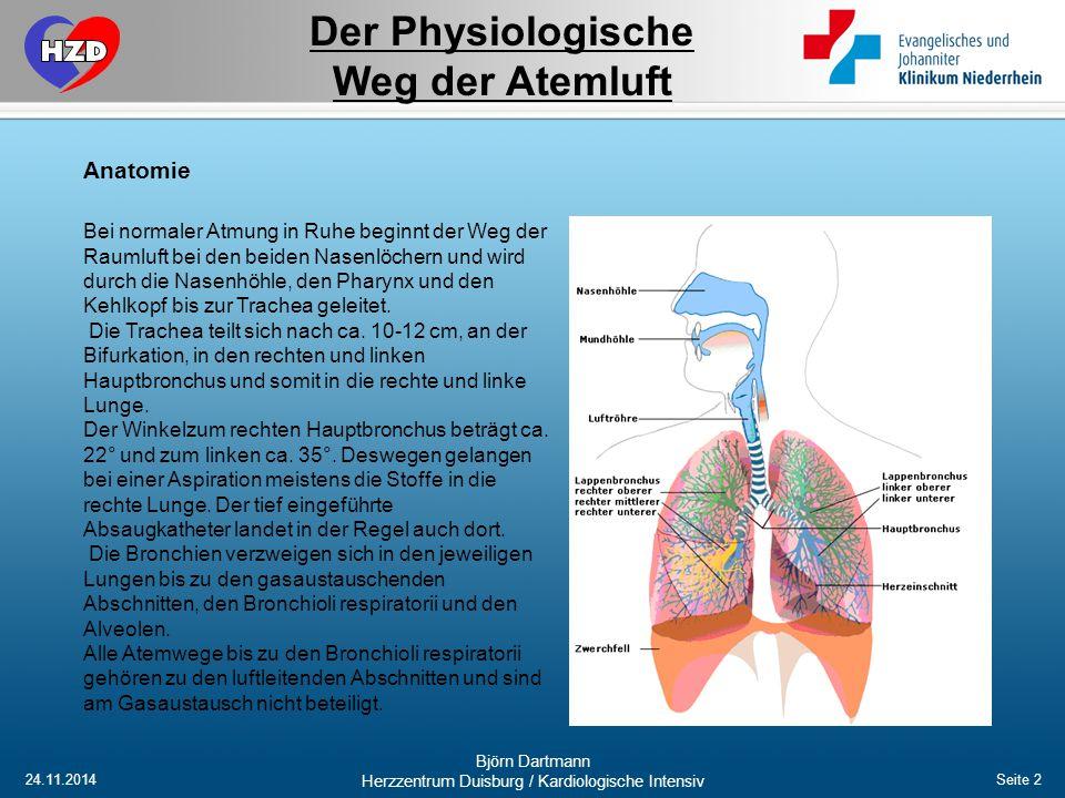 24.11.2014 Björn Dartmann Herzzentrum Duisburg / Kardiologische Intensiv Seite 2 Bei normaler Atmung in Ruhe beginnt der Weg der Raumluft bei den beid