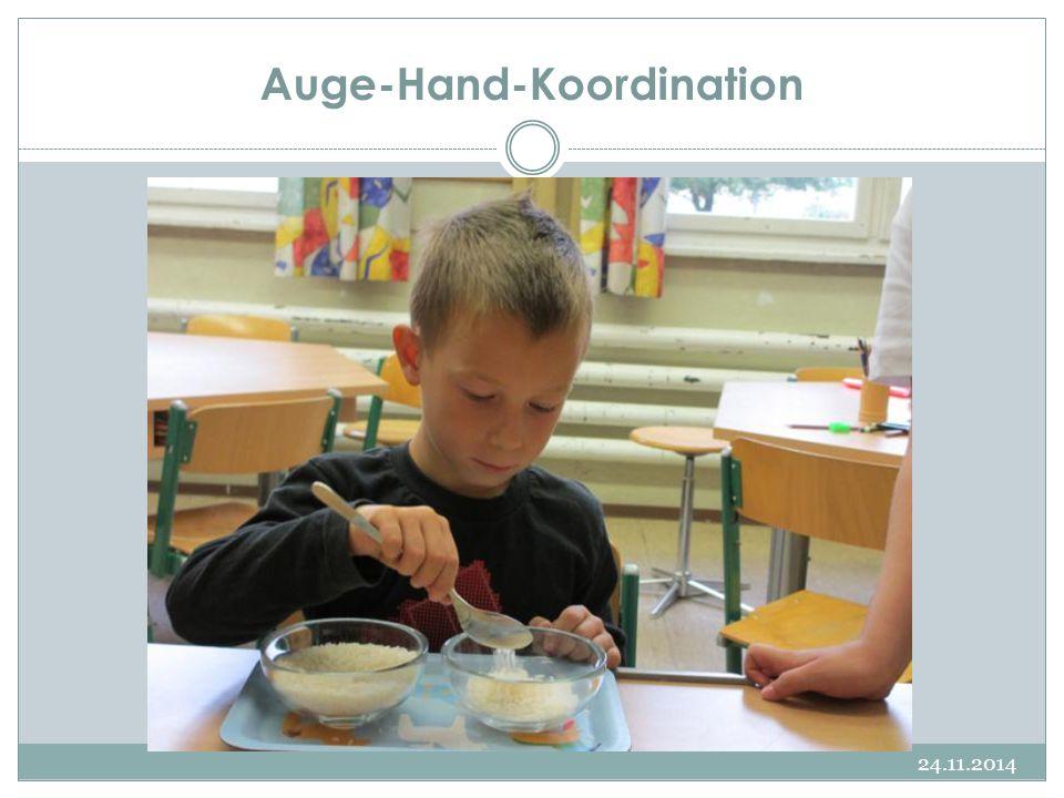 Auge-Hand-Koordination 24.11.2014