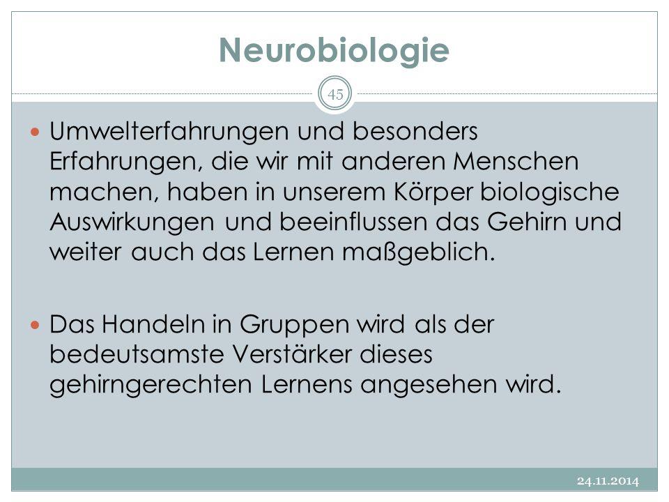 Neurobiologie 24.11.2014 45 Umwelterfahrungen und besonders Erfahrungen, die wir mit anderen Menschen machen, haben in unserem Körper biologische Ausw