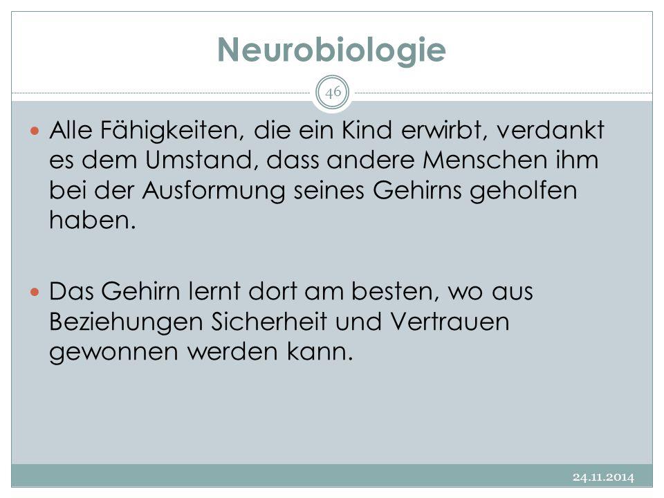 Neurobiologie 24.11.2014 46 Alle Fähigkeiten, die ein Kind erwirbt, verdankt es dem Umstand, dass andere Menschen ihm bei der Ausformung seines Gehirn