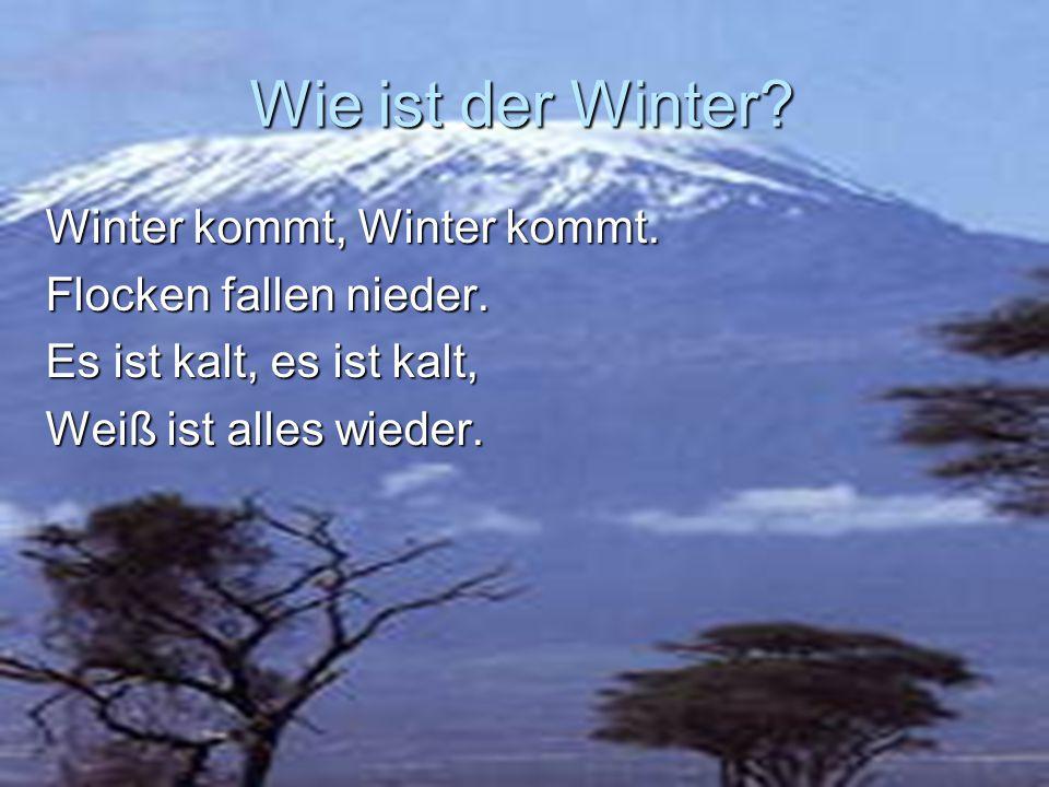 Wie ist der Winter? Winter kommt, Winter kommt. Flocken fallen nieder. Es ist kalt, es ist kalt, Weiß ist alles wieder.