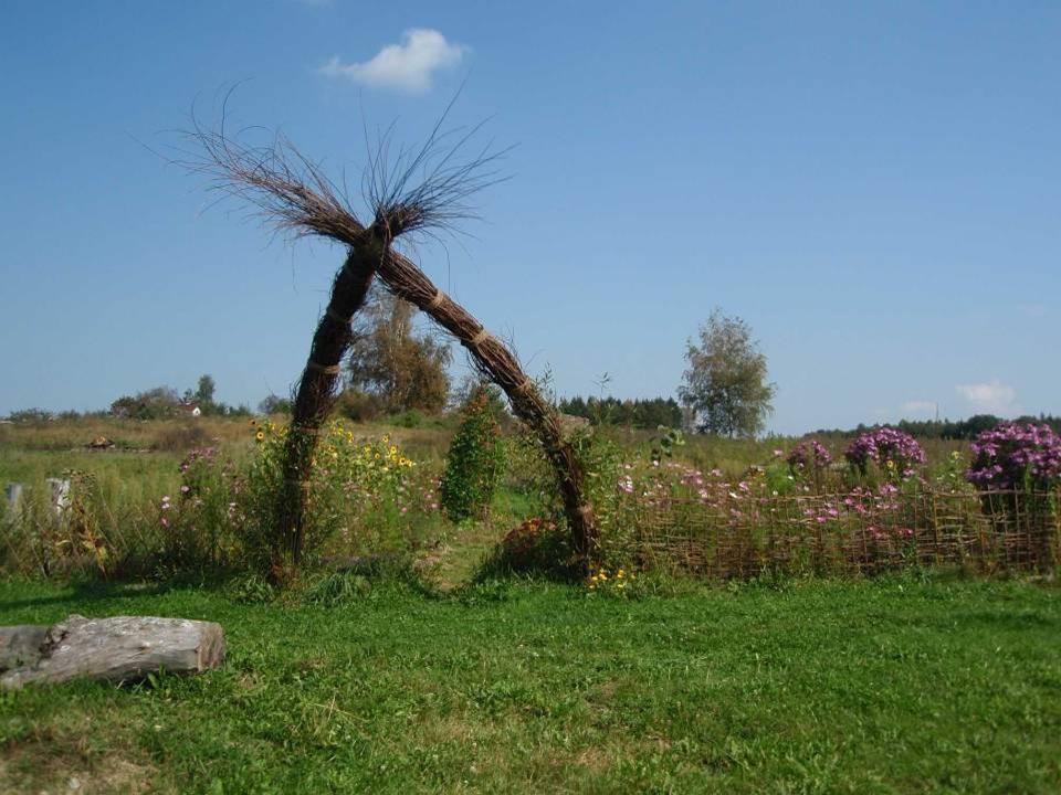 Heidenreichsteiner Moor Bei diesem Moor handelt es sich um ehemalige Torfstiche, die sich seit der Aufgabe ihrer Nutzung auf natürliche Weise regeneri