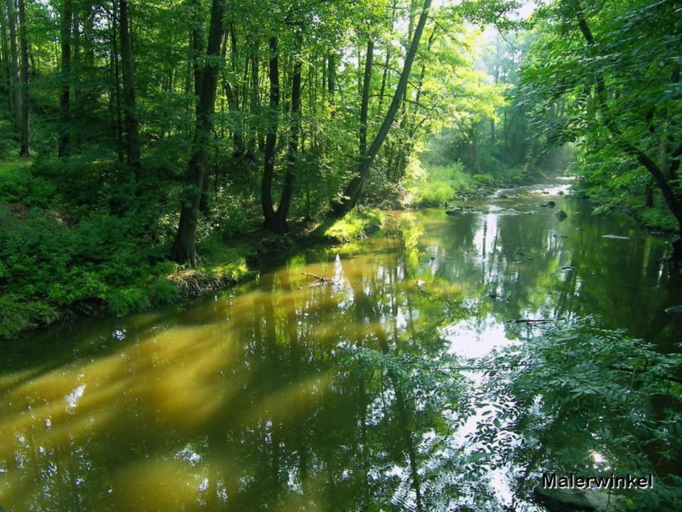 Blockheide Gmünd Das Landschaftsbild des Naturparks wird durch mächtige Granitblöcke, Birkenhaine, Rotföhren, Heidekraut und einem Teich bestimmt. In