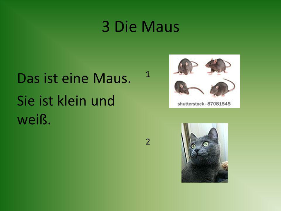 3 Die Maus Das ist eine Maus. Sie ist klein und weiß. 1212