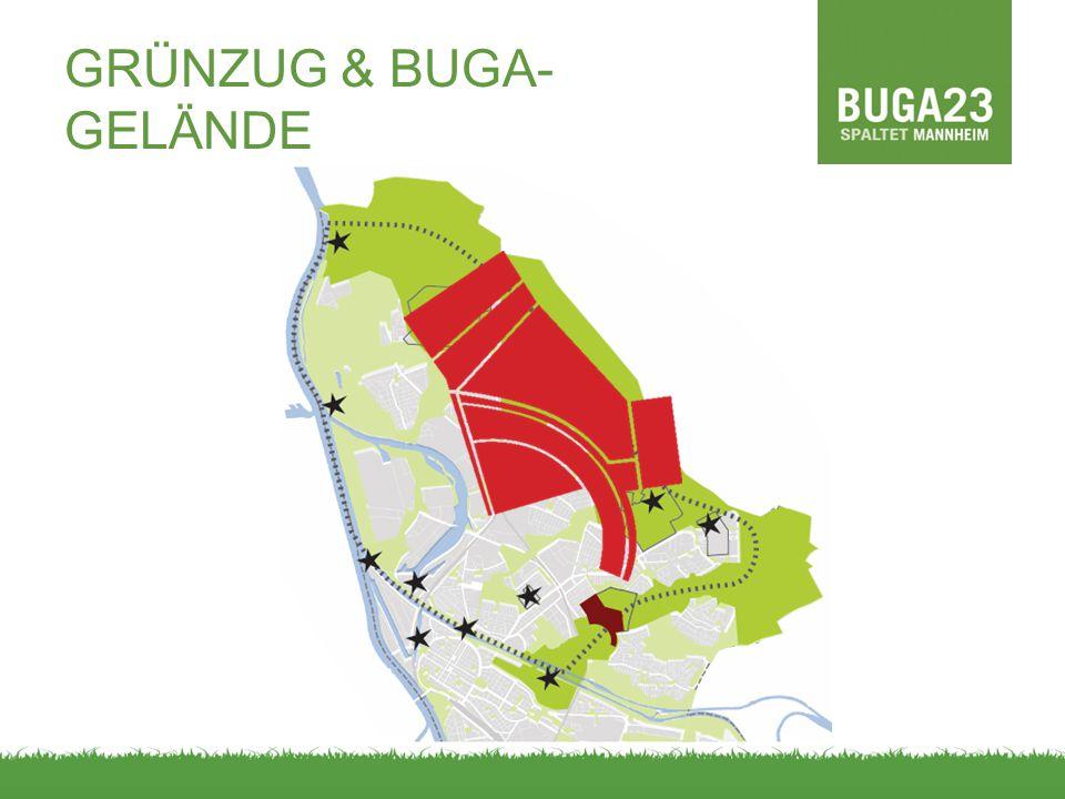 ERGEBNISSE // FORSCHUNGSFRAGE II Welche Konfliktthemen und Beweggründe spielen bei den Anspruchsgruppen um die BUGA 23 eine Rolle?