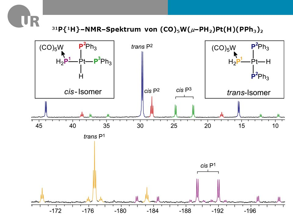 31 P{ 1 H}–NMR–Spektrum von (CO) 5 W(–PH 2 )Pt(H)(PPh 3 ) 2