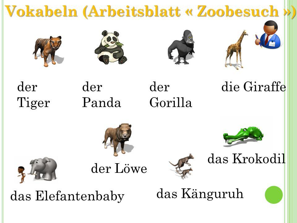 der Tiger der Panda der Gorilla die Giraffe der Löwe das Elefantenbaby das Känguruh das Krokodil Vokabeln (Arbeitsblatt « Zoobesuch »)