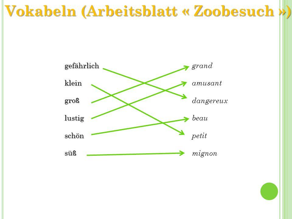 gefährlichklein gro ß lustigschön sü ß grand amusant dangereux beau petit mignon Vokabeln (Arbeitsblatt « Zoobesuch »)