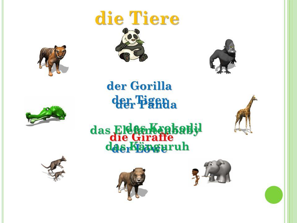 die Tiere der Tiger der Gorilla die Giraffe das Elefantenbaby der Löwe das Känguruh das Krokodil der Panda
