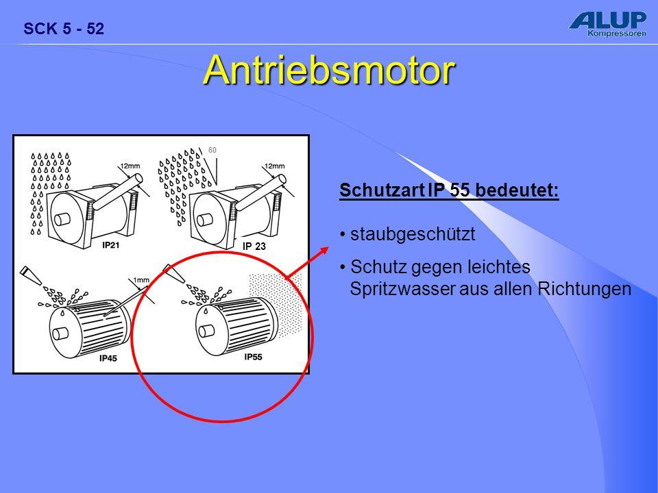 SCK 5 - 52 Antriebsmotor Schutzart IP 55 bedeutet: staubgeschützt Schutz gegen leichtes Spritzwasser aus allen Richtungen IP 23 60