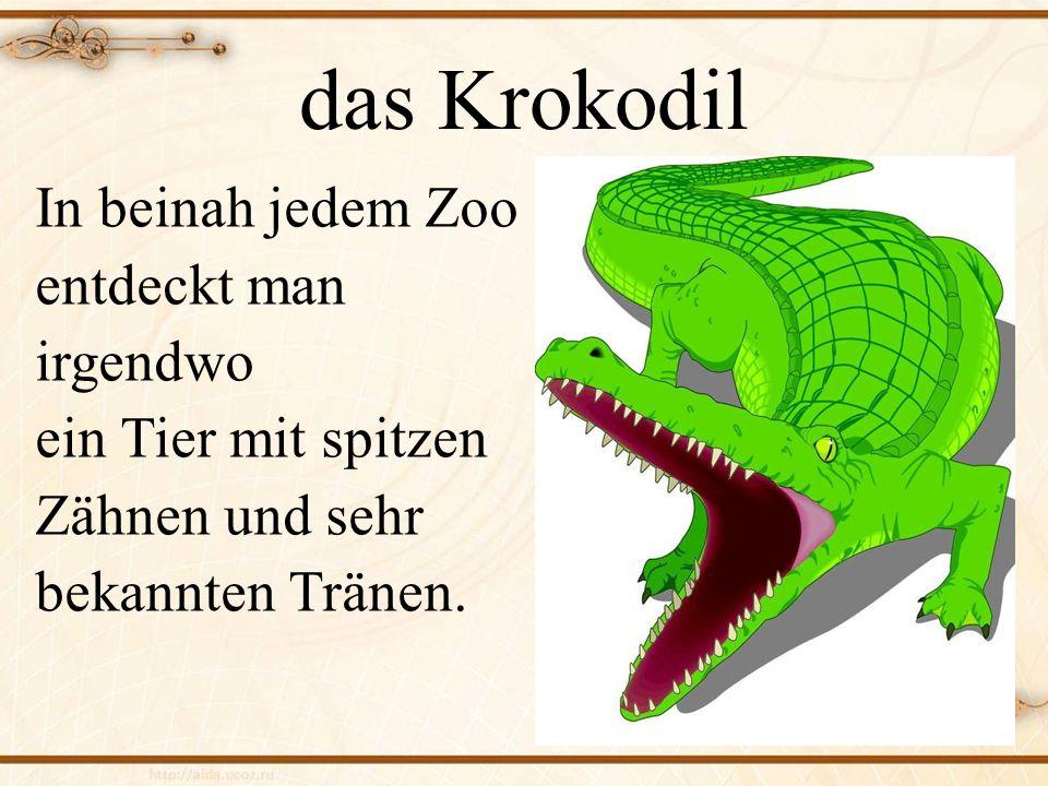 das Krokodil In beinah jedem Zoo entdeckt man irgendwo ein Tier mit spitzen Zähnen und sehr bekannten Tränen.