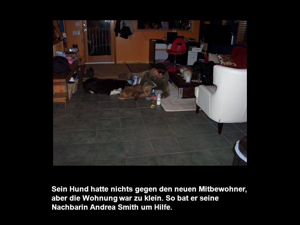 Sein Hund hatte nichts gegen den neuen Mitbewohner, aber die Wohnung war zu klein.