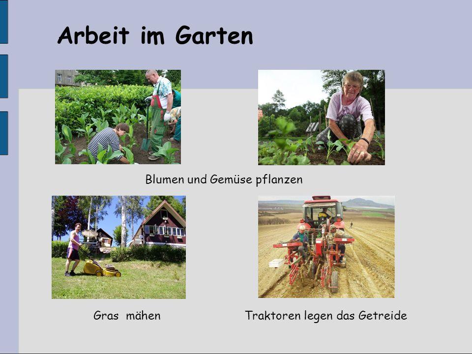 Blumen und Gemüse pflanzen Traktoren legen das GetreideGras mähen Arbeit im Garten