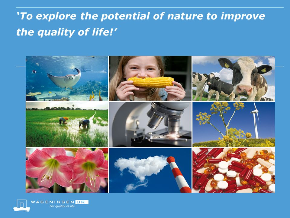 'To explore the potential of nature to improve the quality of life!'