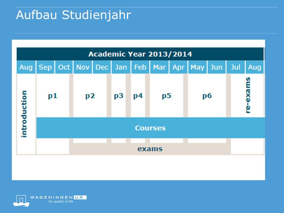 Struktur des Studiums Direkte Zusammenarbeit (Dozent-Student, Student-Student) Kleine Gruppen Multidisziplinär Freie Wahl Didaktische Konzepte