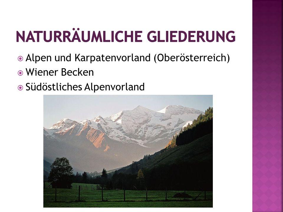  Alpen und Karpatenvorland (Oberösterreich)  Wiener Becken  Südöstliches Alpenvorland