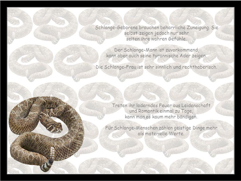 Schlange 23:10. - 22.11. Zeit des Frostes Baum: Weide Stein: Amethyst Farbe: orange Schlange-Menschen sind verschlossen und geheimnisvoll. Viele Mensc