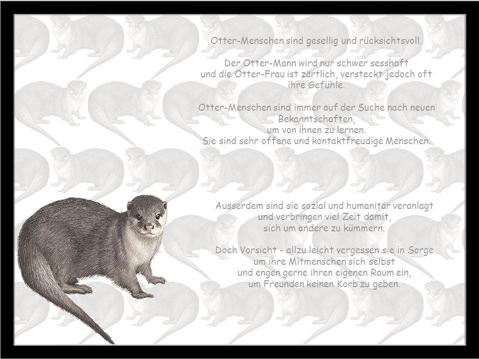 Otter 20.1. – 18.2. Zeit der Reinigung Baum: Weissbirke Stein: Peridot Farbe: grau Otter-Menschen sind oft rastloser Natur und haben ein starkes Selbs