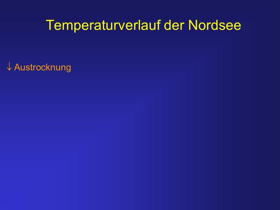 Temperaturverlauf der Nordsee  Austrocknung