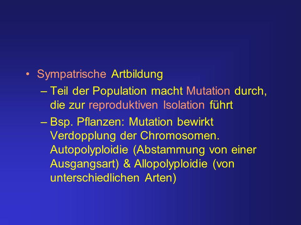 Sympatrische Artbildung –Teil der Population macht Mutation durch, die zur reproduktiven Isolation führt –Bsp. Pflanzen: Mutation bewirkt Verdopplung