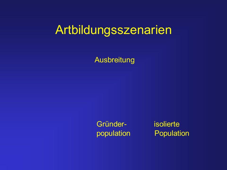 Artbildungsszenarien Gründer- isolierte population Population Ausbreitung