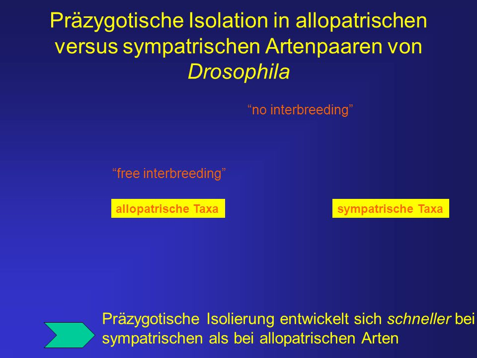 """Präzygotische Isolation in allopatrischen versus sympatrischen Artenpaaren von Drosophila """"no interbreeding"""" """"free interbreeding"""" Präzygotische Isolie"""