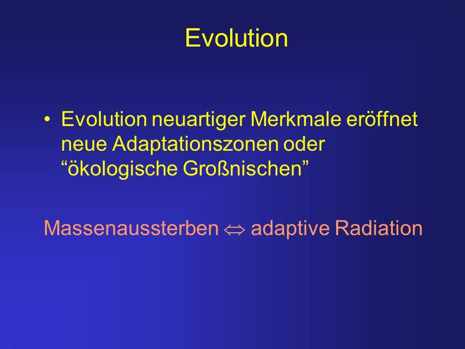 """Evolution Evolution neuartiger Merkmale eröffnet neue Adaptationszonen oder """"ökologische Großnischen"""" Massenaussterben  adaptive Radiation"""