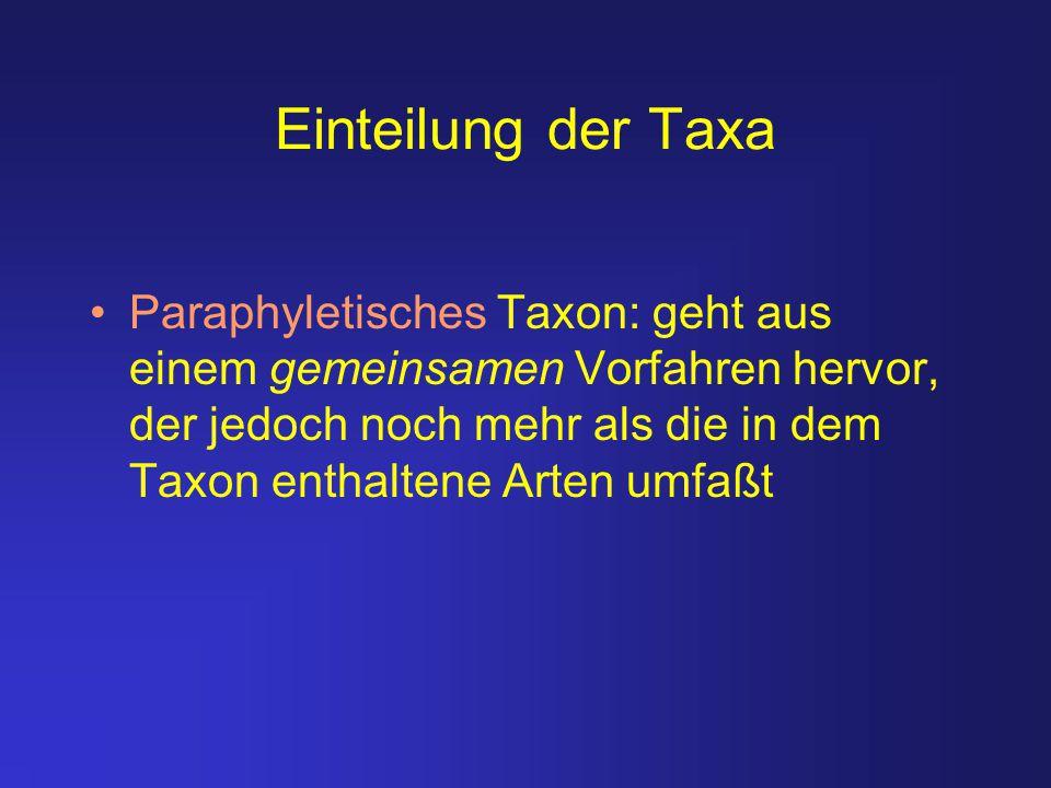 Einteilung der Taxa Paraphyletisches Taxon: geht aus einem gemeinsamen Vorfahren hervor, der jedoch noch mehr als die in dem Taxon enthaltene Arten um