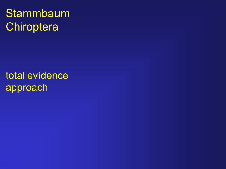 Stammbaum Chiroptera total evidence approach