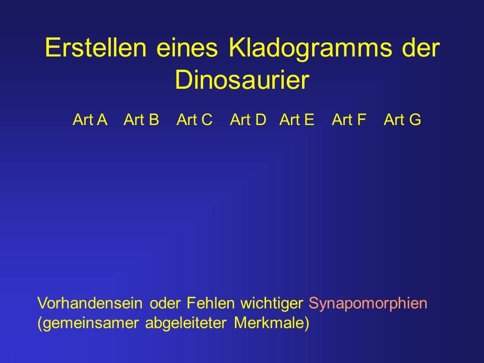 Erstellen eines Kladogramms der Dinosaurier Vorhandensein oder Fehlen wichtiger Synapomorphien (gemeinsamer abgeleiteter Merkmale) Art A Art B Art C A