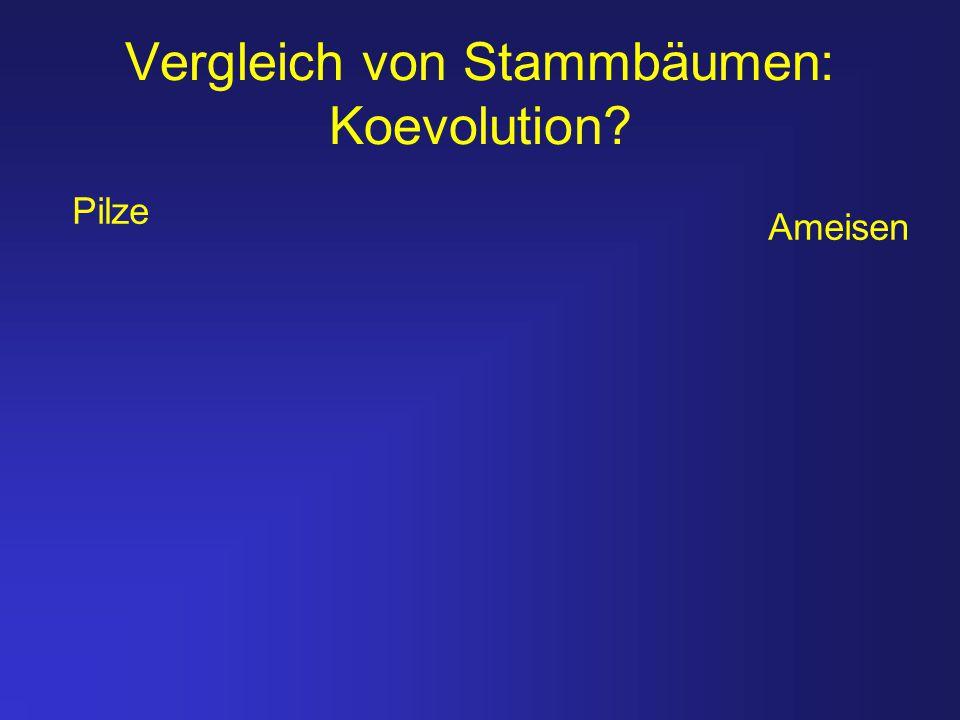 Vergleich von Stammbäumen: Koevolution? Ameisen Pilze
