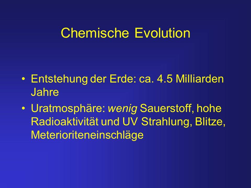 Chemische Evolution Entstehung der Erde: ca. 4.5 Milliarden Jahre Uratmosphäre: wenig Sauerstoff, hohe Radioaktivität und UV Strahlung, Blitze, Meteri