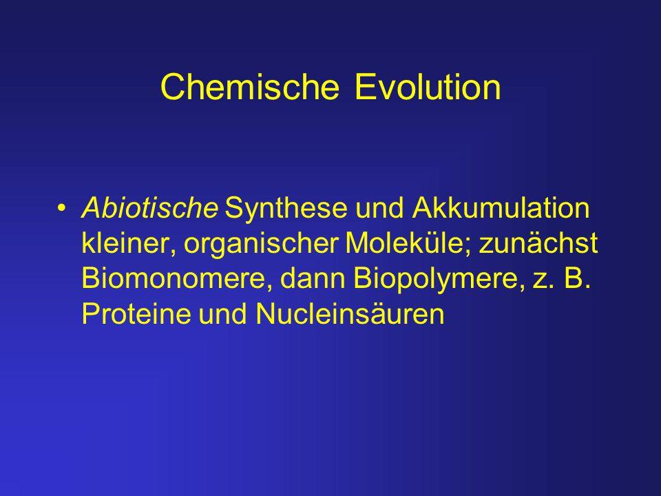 Chemische Evolution Abiotische Synthese und Akkumulation kleiner, organischer Moleküle; zunächst Biomonomere, dann Biopolymere, z. B. Proteine und Nuc